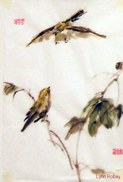 chinese-finches-singing