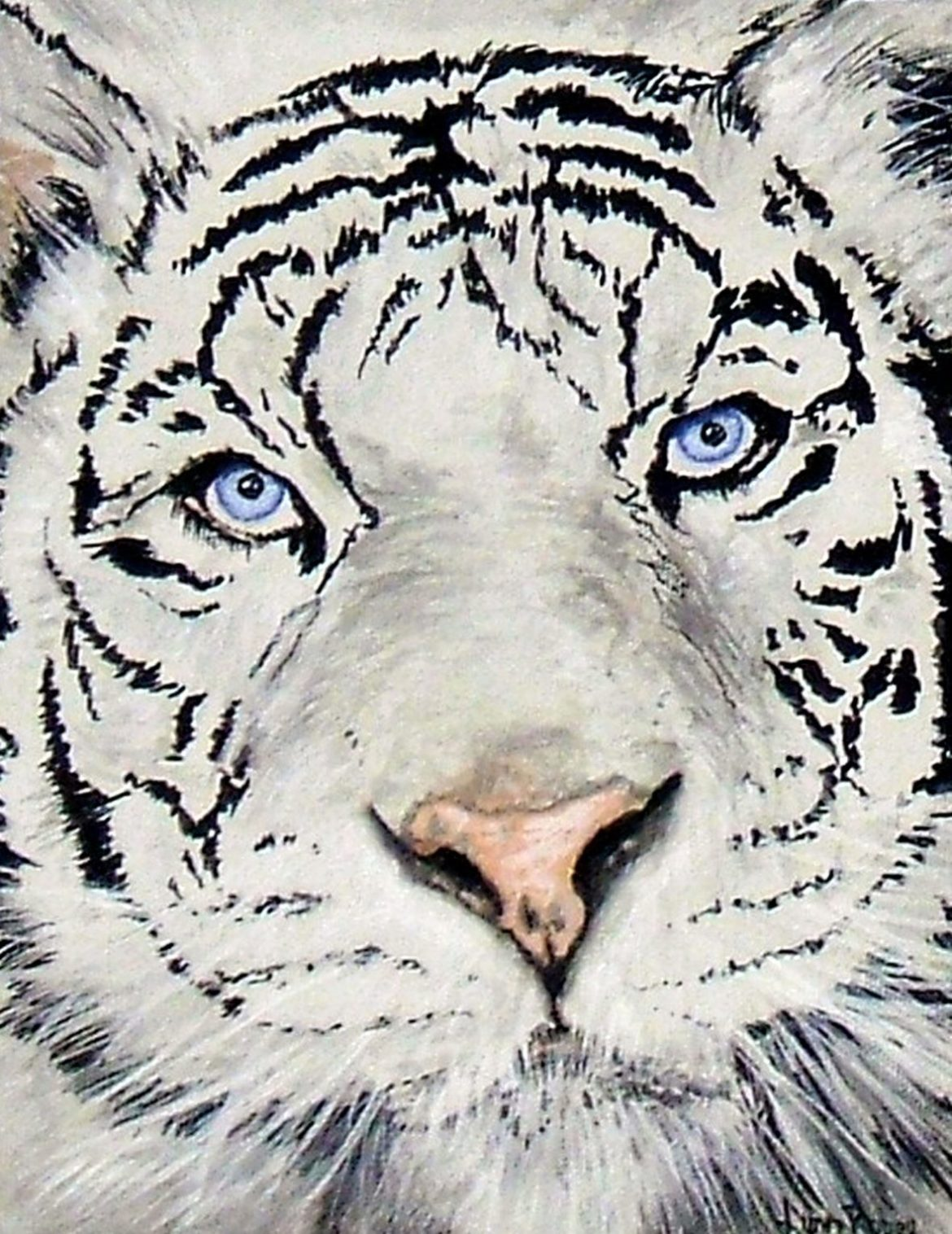 Tiger painting by Lynn Robey